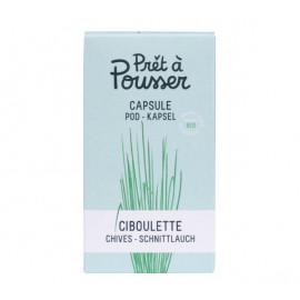 Prêt à Pousser - Capsule Ciboulette